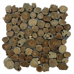Wood Panels06 Coin Root 30x30x1,5